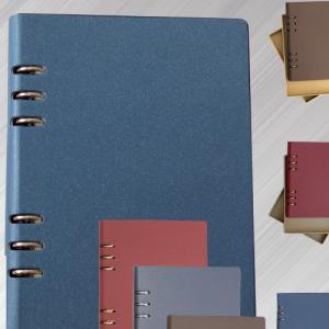 Notebook F91-17